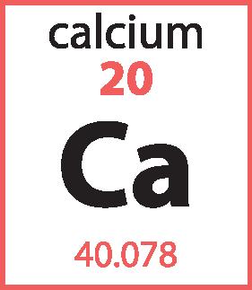 Calcium pnk blk-08.png