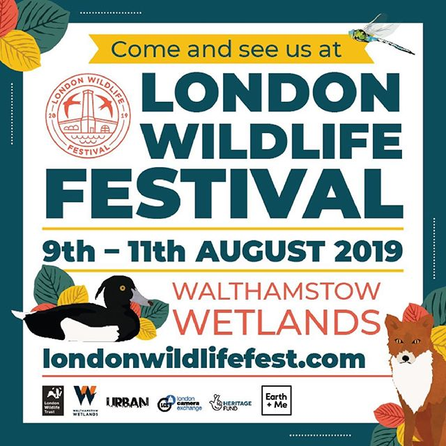 If you're in London 10th - 11th come to the Walthamstow Wetlands 🙌 The London wildlife trust are putting on their first festival and we will be there showcasing our latest sustainable living products we have found for you.  Come with the code: LWT19 and get 10% off with Earth + Me. _ _ _ _ #earthandme #sustainable #sustainableliving #ecoliving #londonwildlifetrust #london #wildlife #green #festival #summer #londonfestival #fox #sustainableproducts #coffee