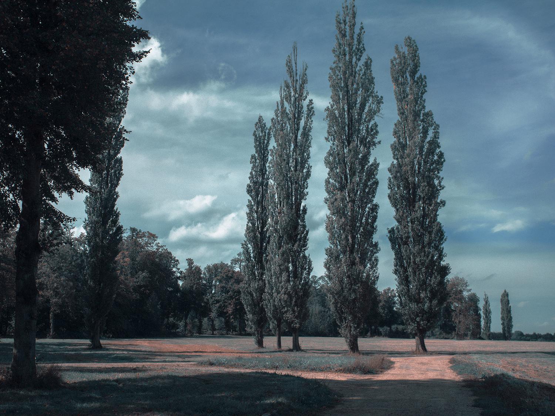 Versailles_Hasselblad0021.jpg