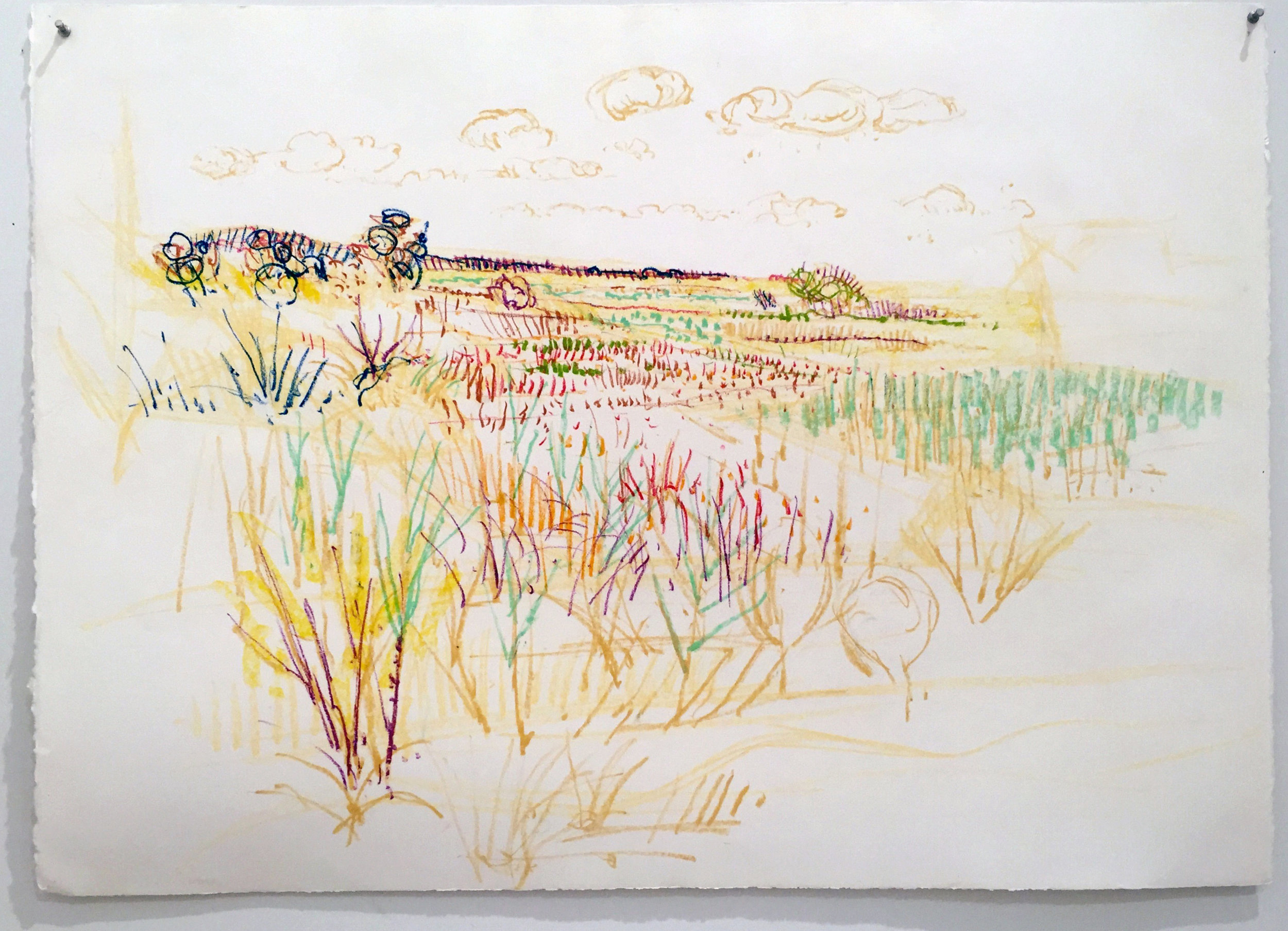 FIELD WITH GRASSES 29.5X41.5