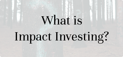 What is Impact Investing | UK National Advisory Board on Impact Investing