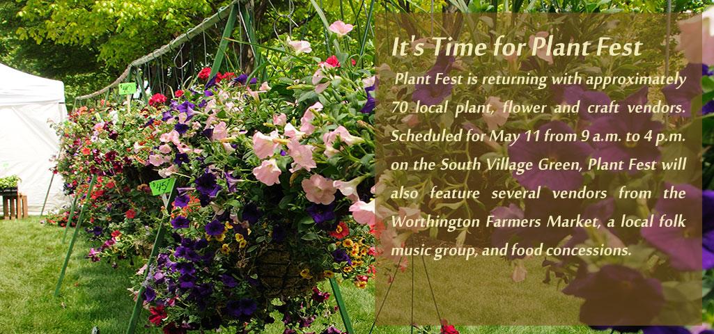 plant-time.jpg