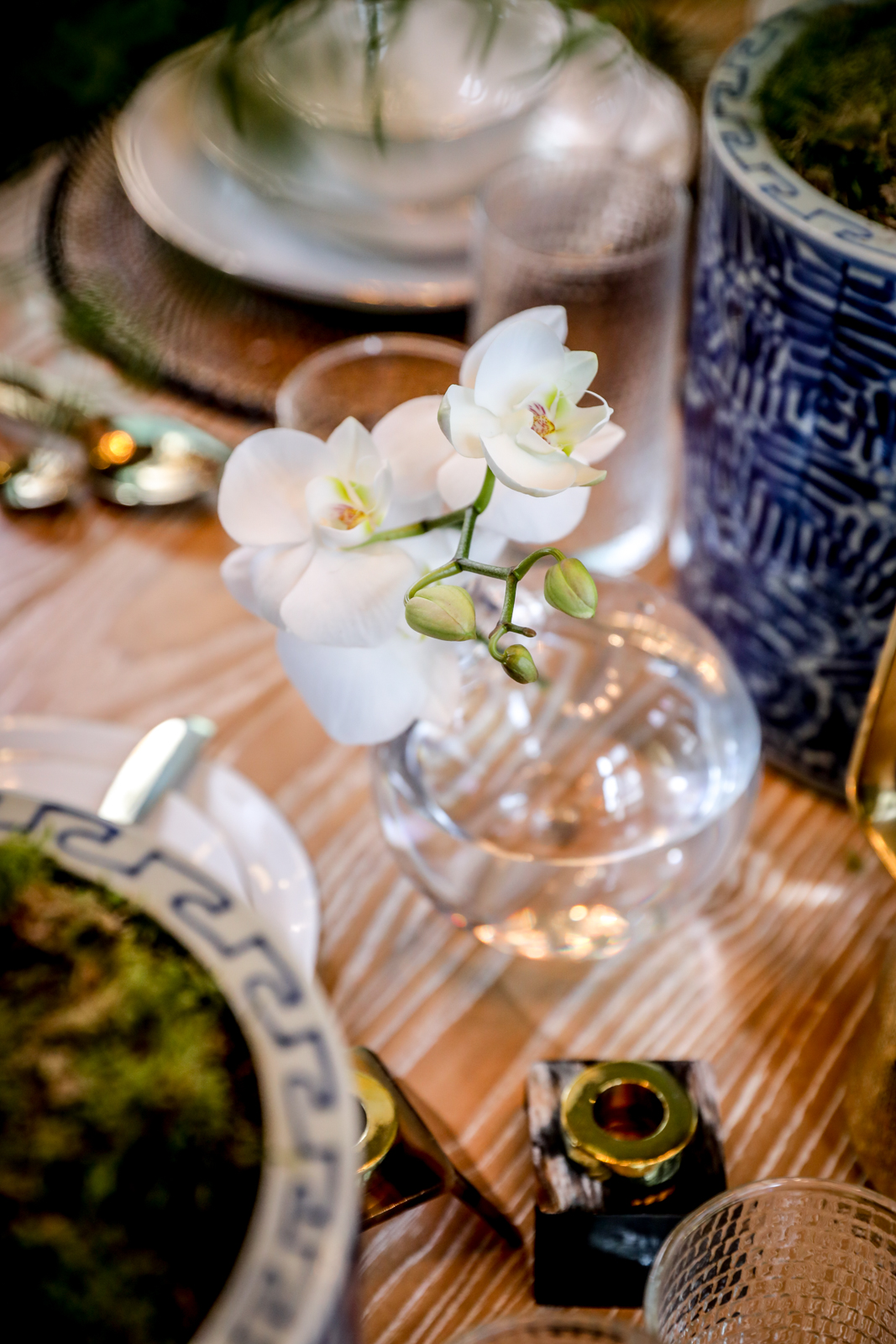 Tablescape-Classic-Blue-White-Gold-Orchid-Neutral.jpg