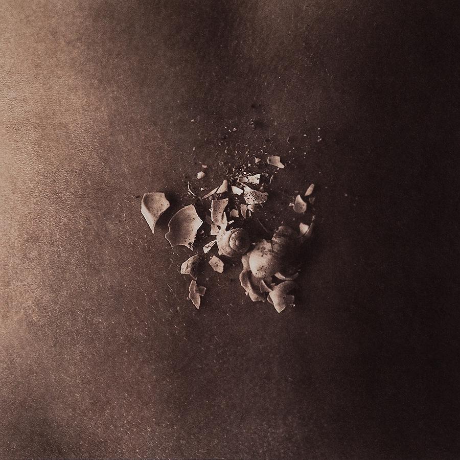 "Untitled 8, 2013, 10""x10"", Gold toned Vandyke Brown print on kozo"