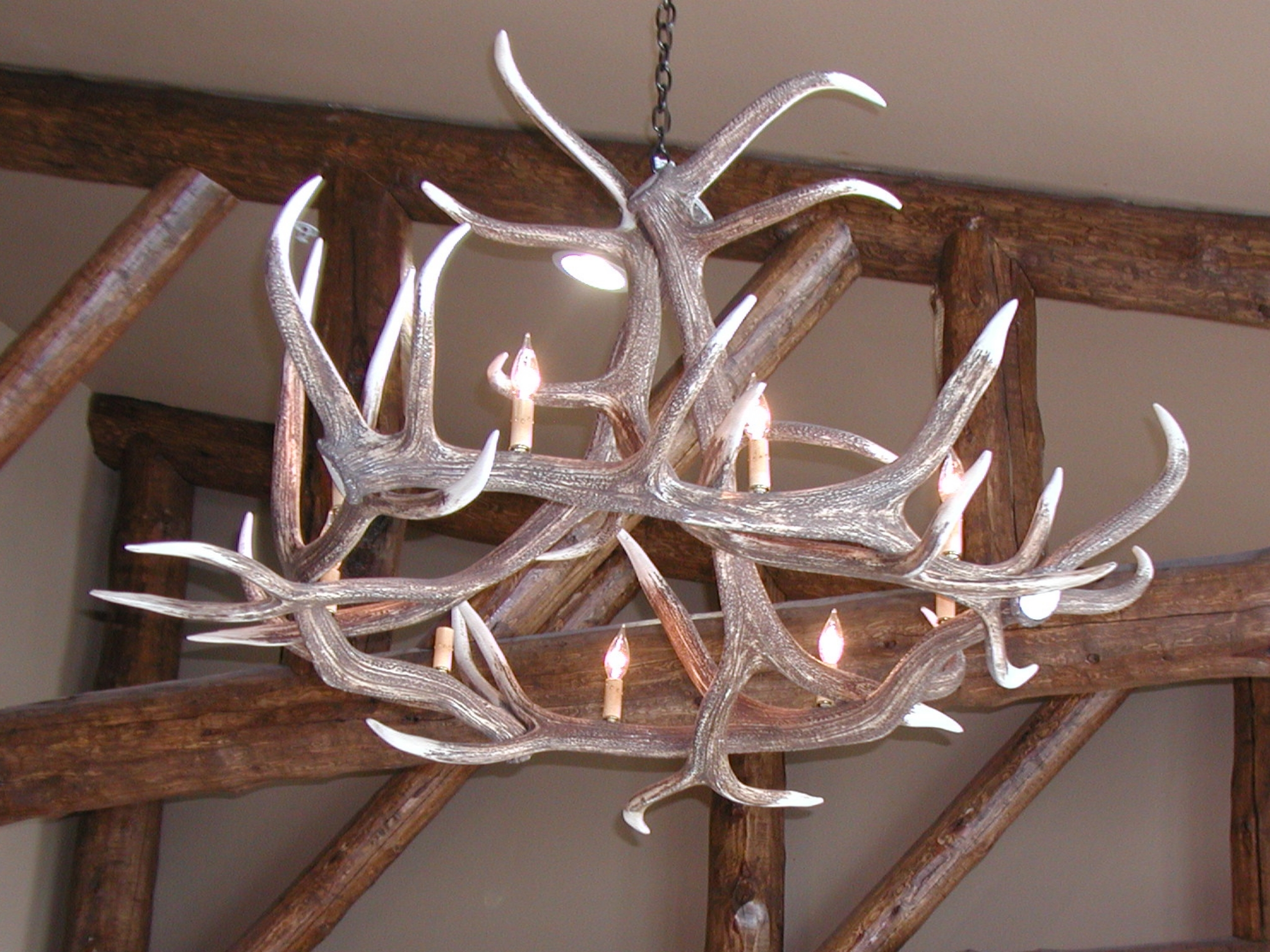 Discovery Park Lodge - Antler Chandalier.JPG