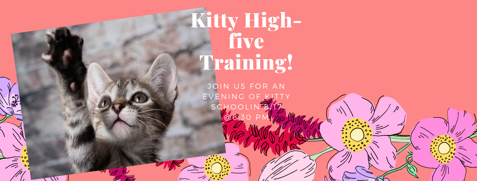 Kitty High-five Training!v2.png