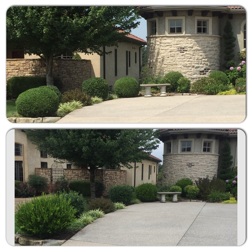 beautiful landscaping in springfield mo
