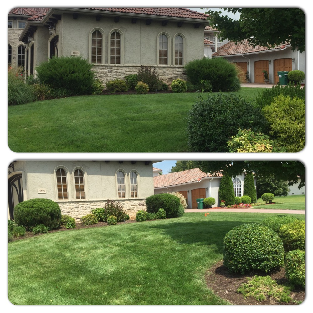 landscaping and mowing in springfield mo