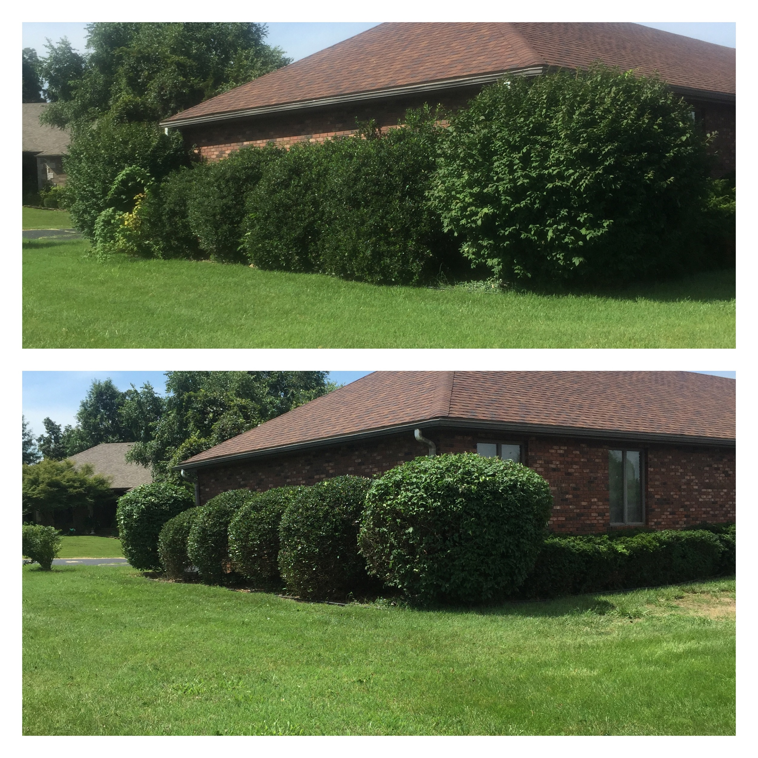 before and after landscaping in springfield mo
