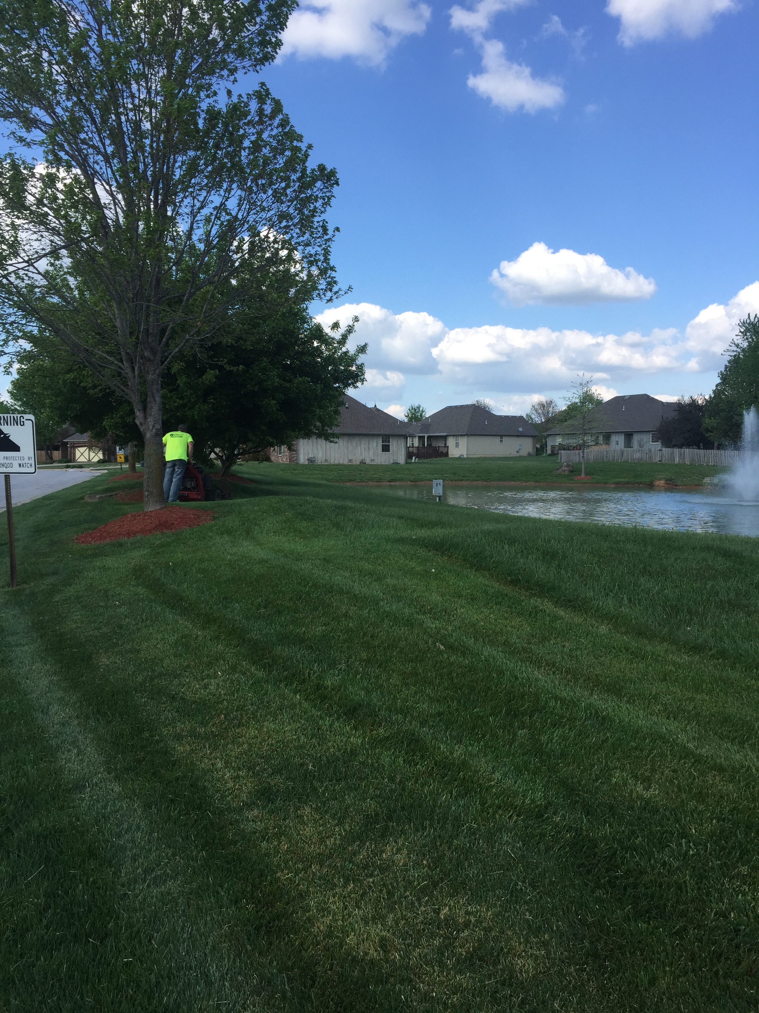 maintained lawn in springfield mo