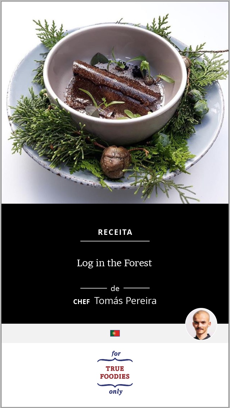 Log in the Forest PT cover.jpg