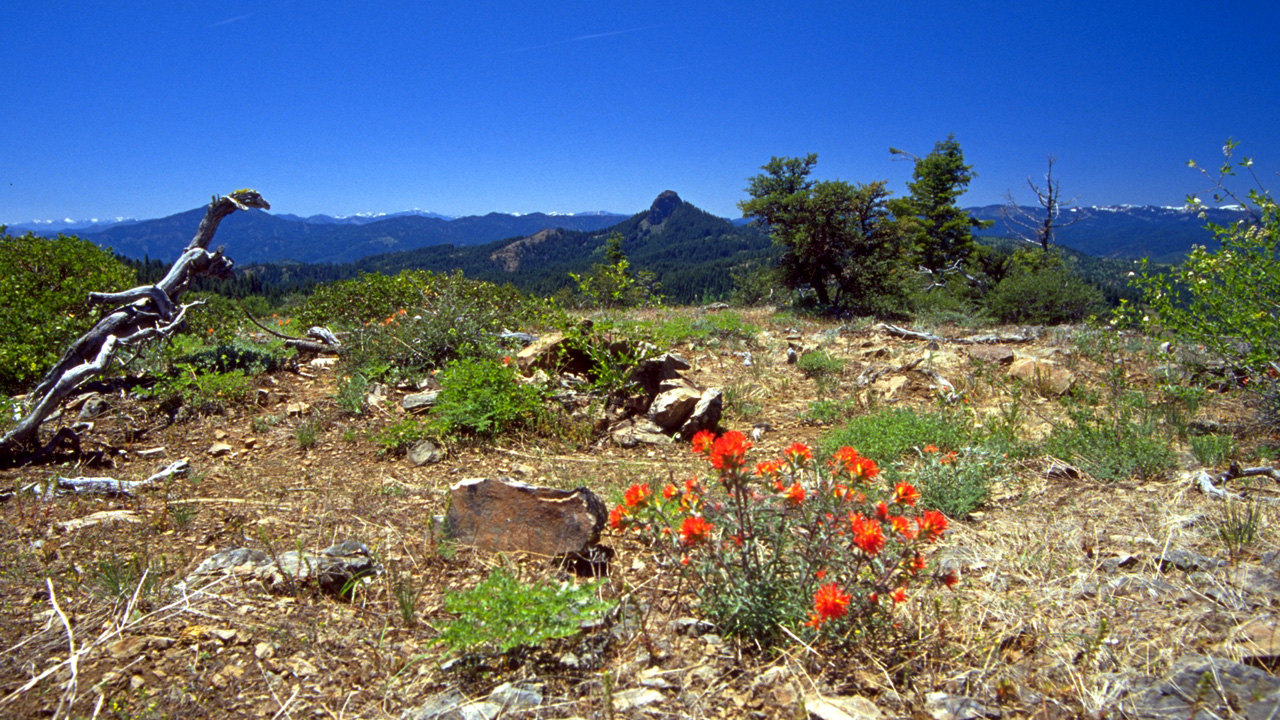 In the middle ground is Pilot Rock, the most prominent landmark within the Cascade-Siskiyou National Monument in Oregon and California.  Source: USDI Bureau of Land Management
