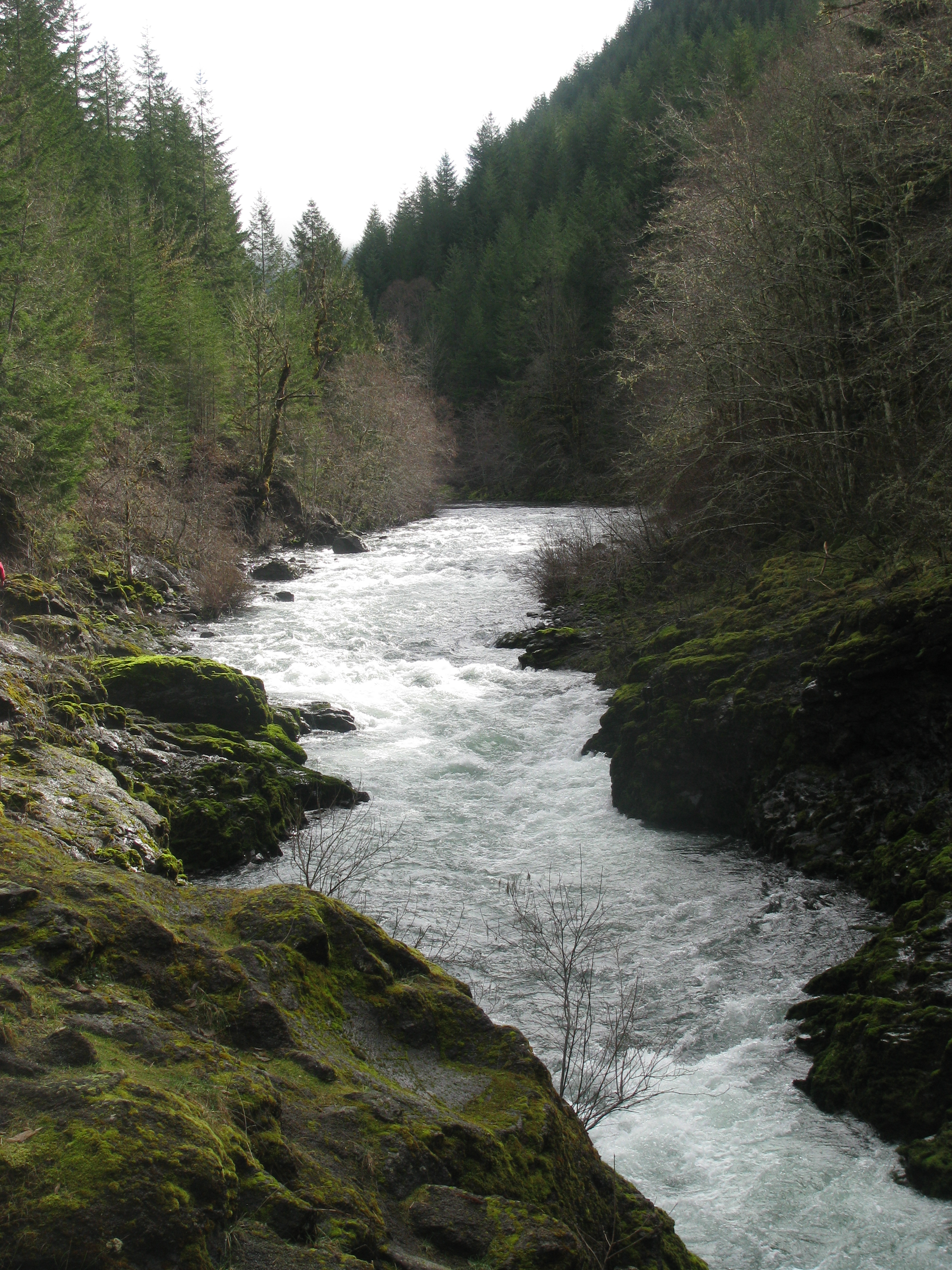 The Molalla River in Clackamas County Oregon would receive protection as a Wild and Scenic River in a new Molalla National Recreation Area.  Source: Wikipedia.
