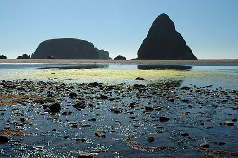 Tidepools, such as this one at Whaleshead Beach in Curry County, Oregon, and oil don't mix.  Source: Gary Halvorson, Oregon State Archives