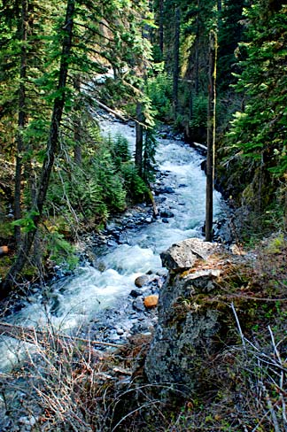 - Figure 3. The West Fork Wallowa River above Wallowa Lake. Source: Gary Halvorson, Oregon State Archives