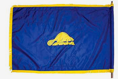 - Figure 5. Rarely does one notice the back of the official state flag of Oregon, the only state flag with different images front and back. Source: Oregon Secretary of State.
