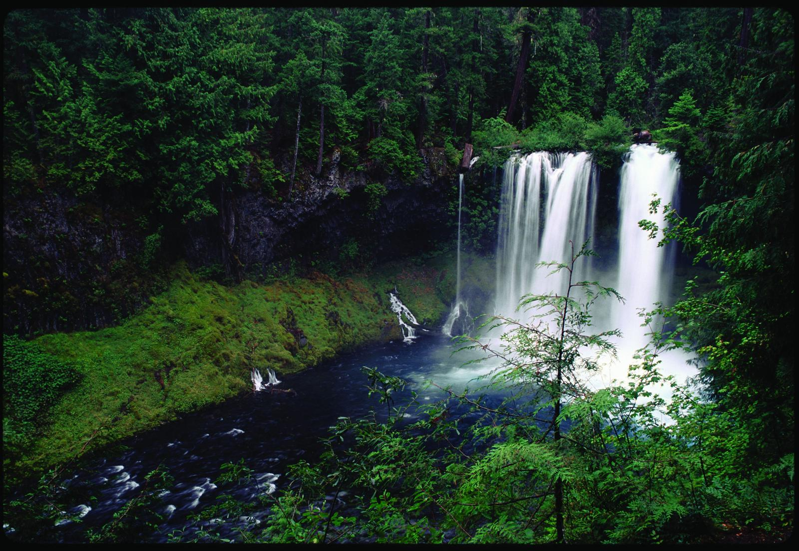 Figure 1. Koosah Falls on the McKenzie River. The segment between Clear Lake and Carmen Reservoir is included in both the National Wild and Scenic Rivers System and the Oregon Scenic Waterways System. Source: George Wuerthner (first appeared in   Oregon Wild: Endangered Forest Wilderness  ).