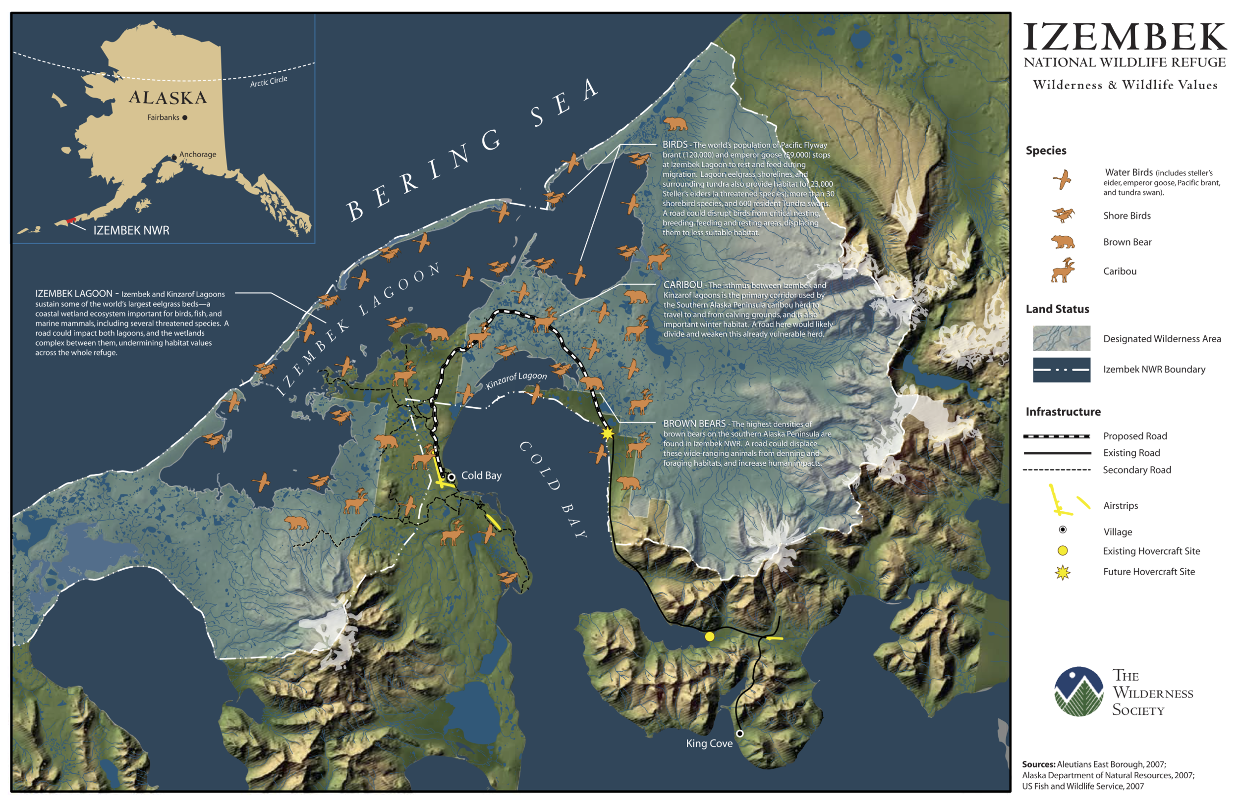Map 2. The Izembek National Wildlife Refuge and Wilderness, shown with annotations of important concentrations of water birds, shorebirds, brown bears, and caribou, and the route of the proposed road (click on source for a larger image). Source: The Wilderness Society .