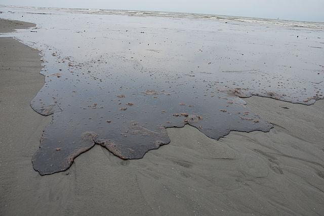 - Figure 3.Coming to a beach near you?Source:Wikipedia