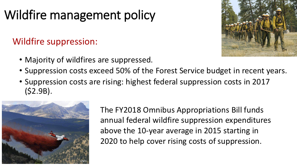 Figure 13 . While Congress recently revised how taxpayers will pay for the bloated Forest Service firefighting budget, it has continued to give the Forest Service a blank check. Those chemical fire-suppressant bomber runs are more telegenic (often timed to be shown live on the evening news) than effective—and are harmful to fish, wildlife, and humans .