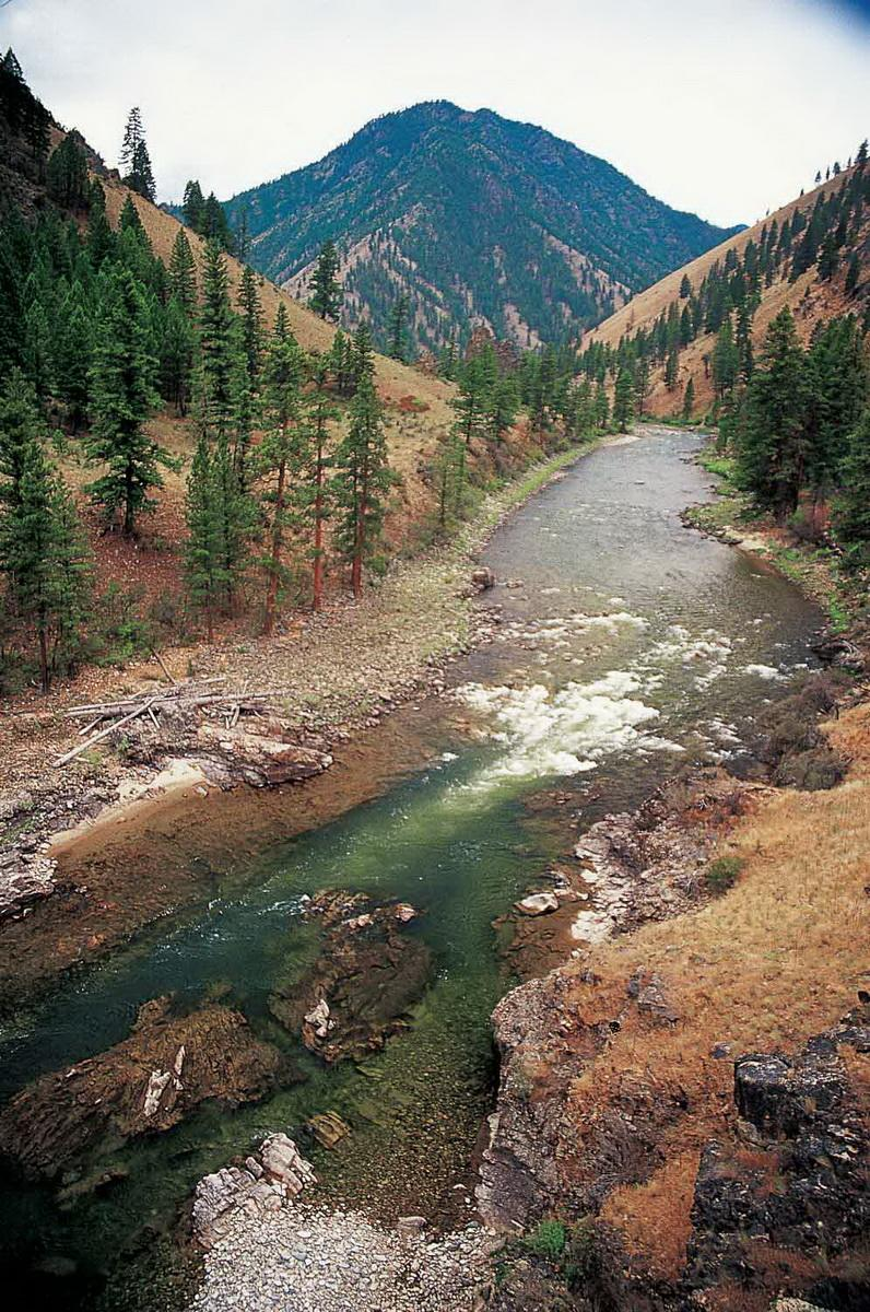 Figure 6.  A salmon stream in central Idaho.  Source:  Save Our Wild Salmon .