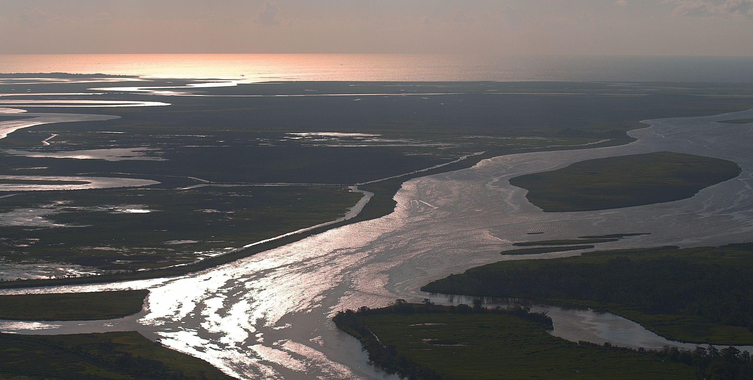 Altamaha River delta by Brian Brown, Vanishing Georgia