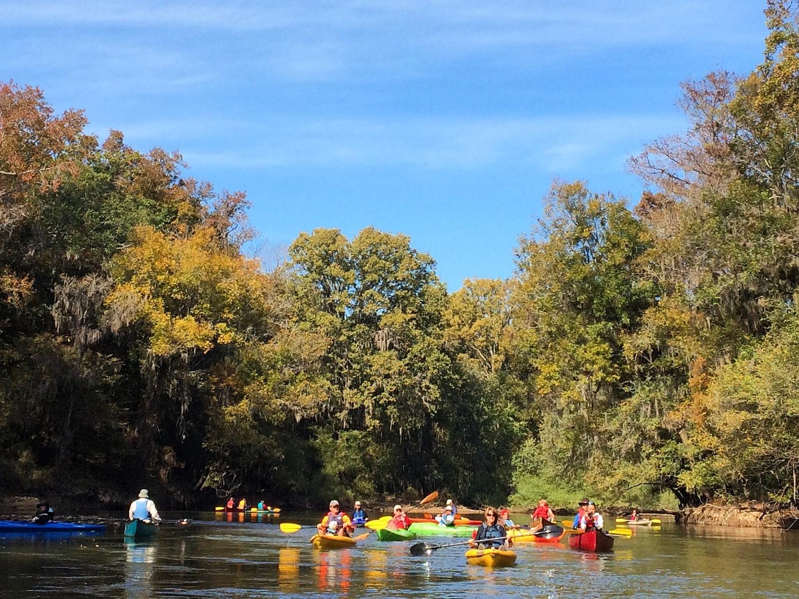 Ocmulgee River Near Hawkinsville / Georgia Conservancy
