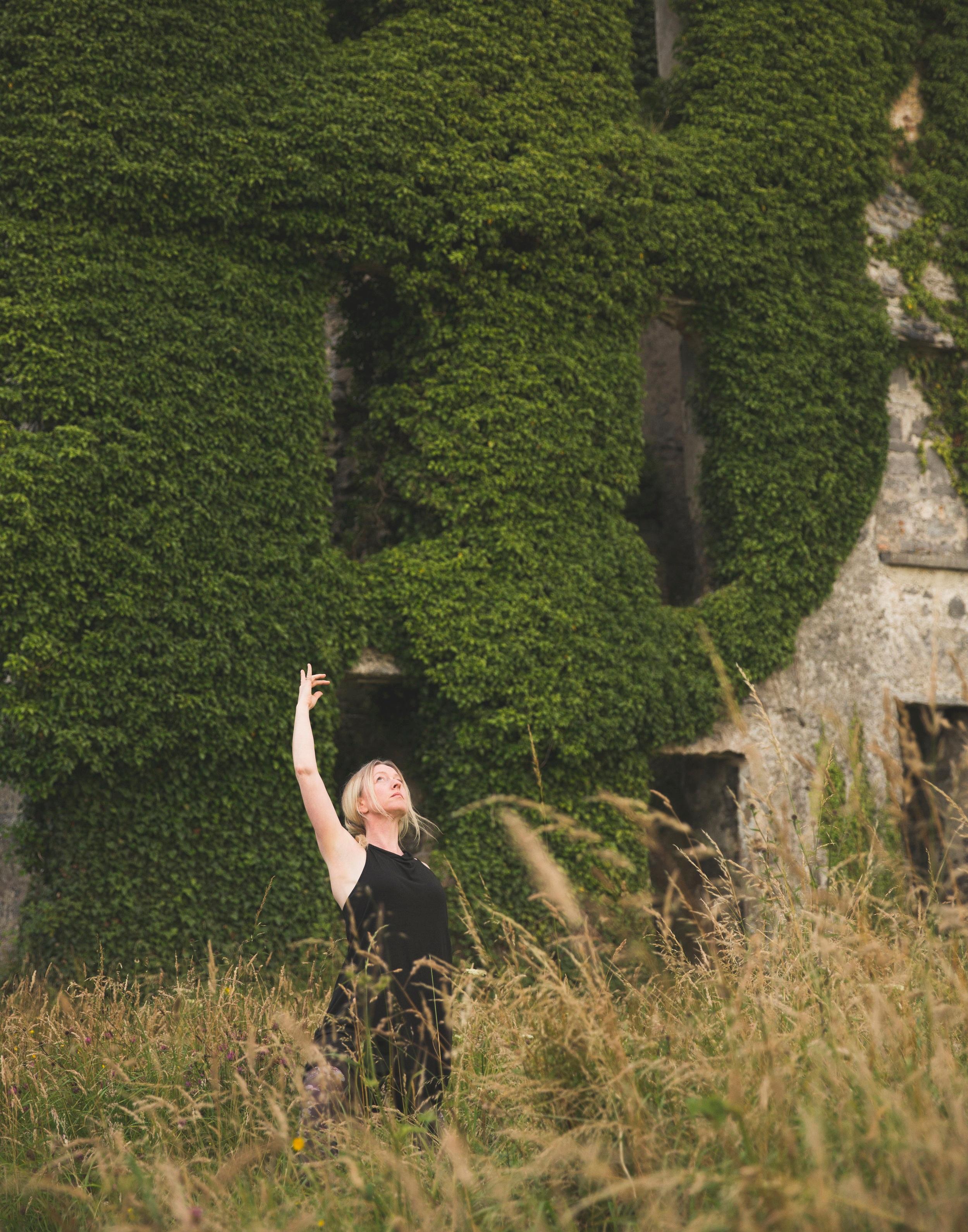 Angela+-+Ireland+Castle+in+the+field.jpg