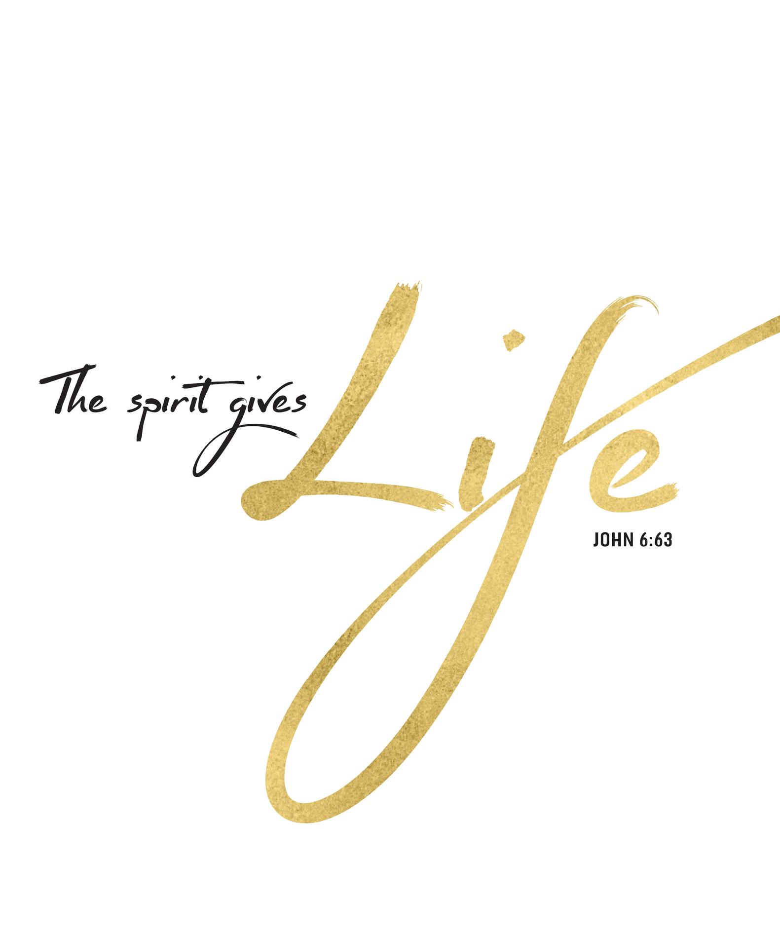 The Spirit gives life.jpg
