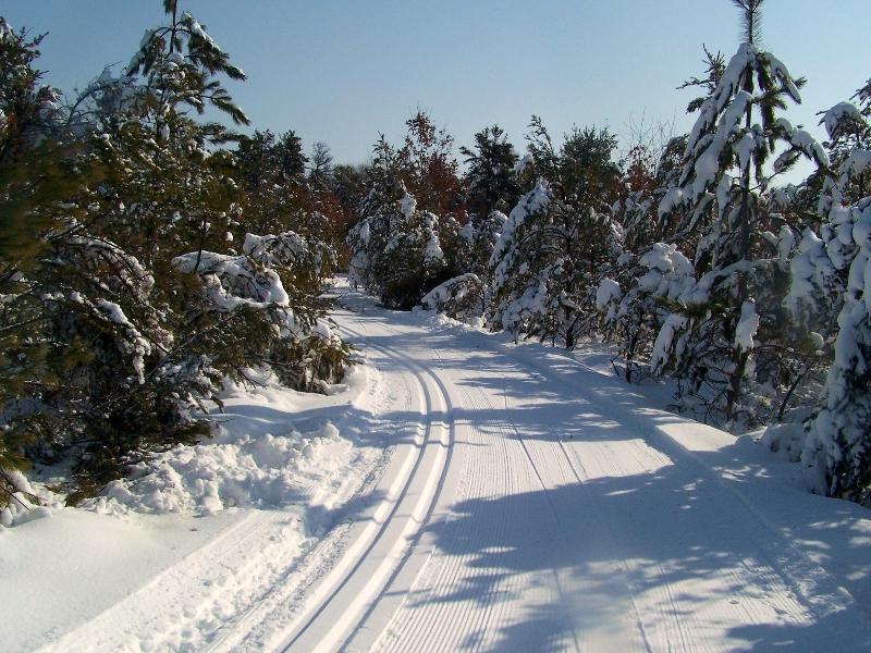 Cross Country Ski Headquarters Crosscountryski Com >> Cross Country Ski Headquarters Cross Country Skiing