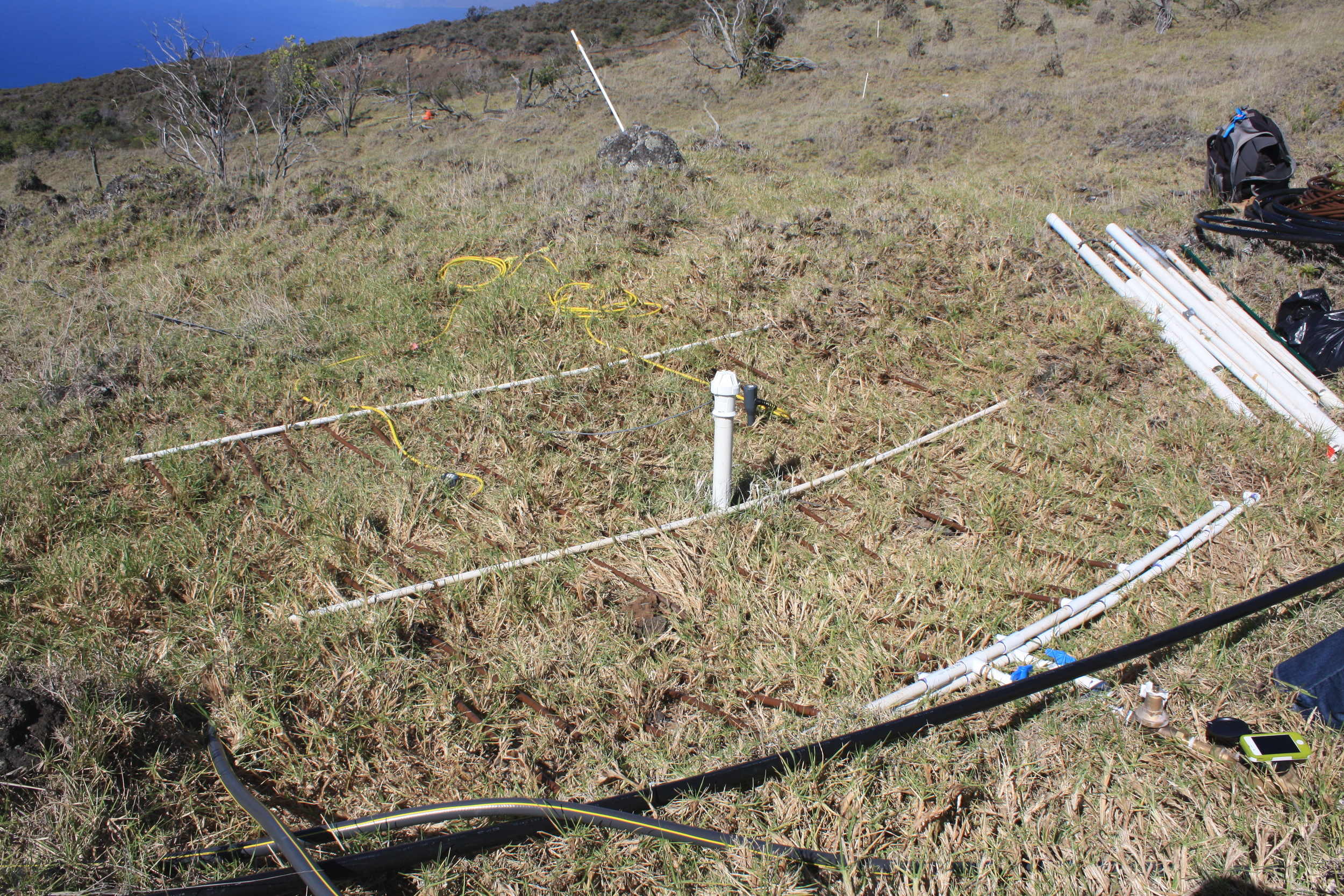 Experimental irrigation system  and meter-  deep Enviroscan soil probe head  in  non-native grasslands  adjacent to restored native forest stands, Auwahi, Maui island, Hawai`i.