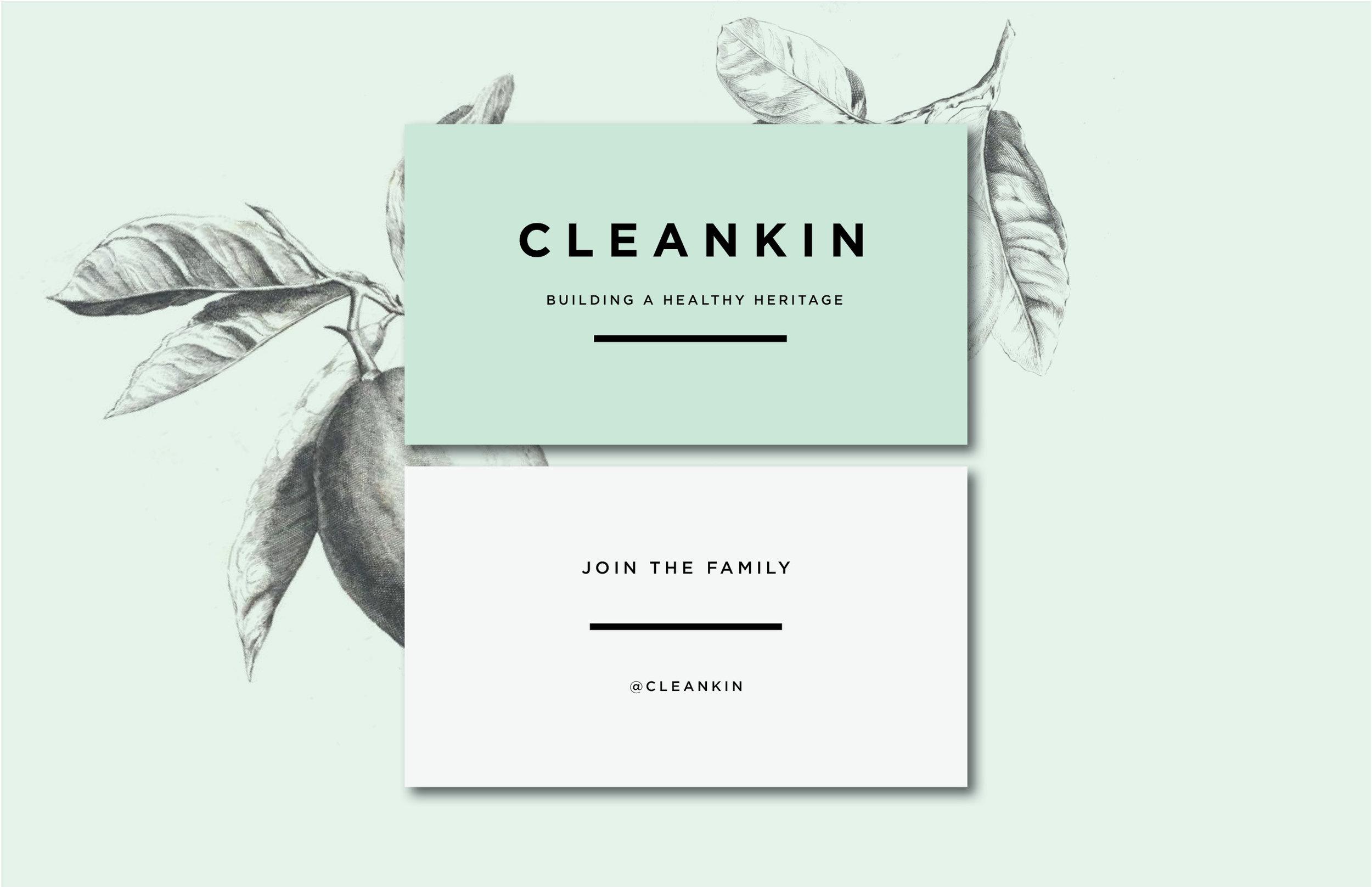 logo-design-branding-orange-county-marks-and-maker-cleankin-6.jpg