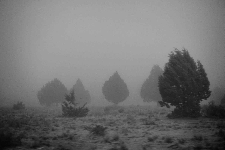 Desert Storms, 2012