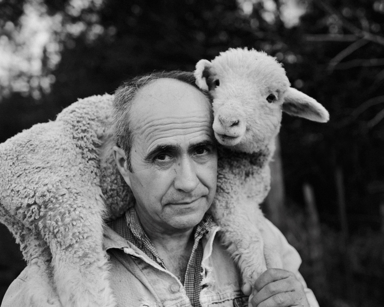 The Bum Lamb