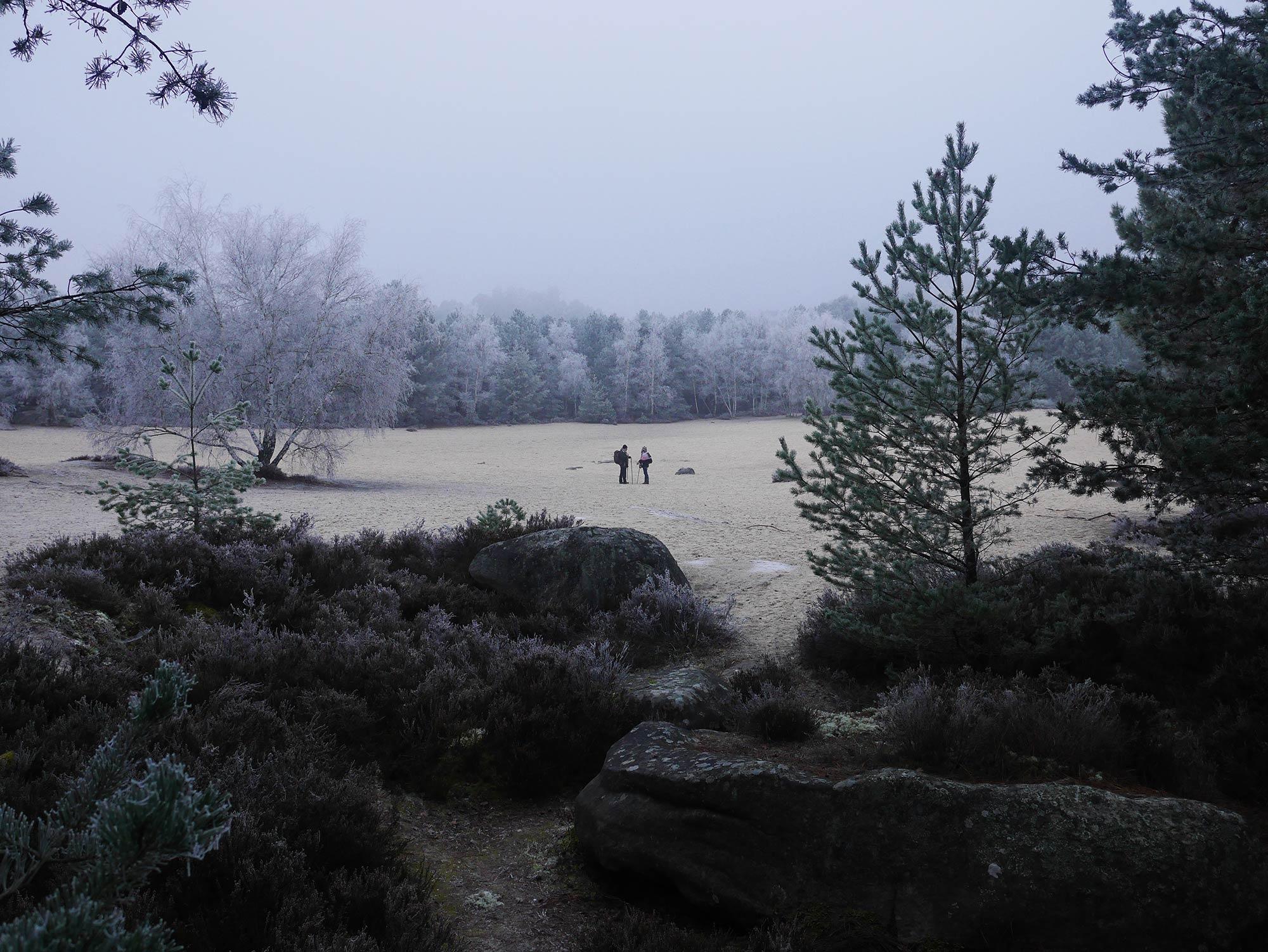 6_Fontainebleau_LocalLegends.jpg