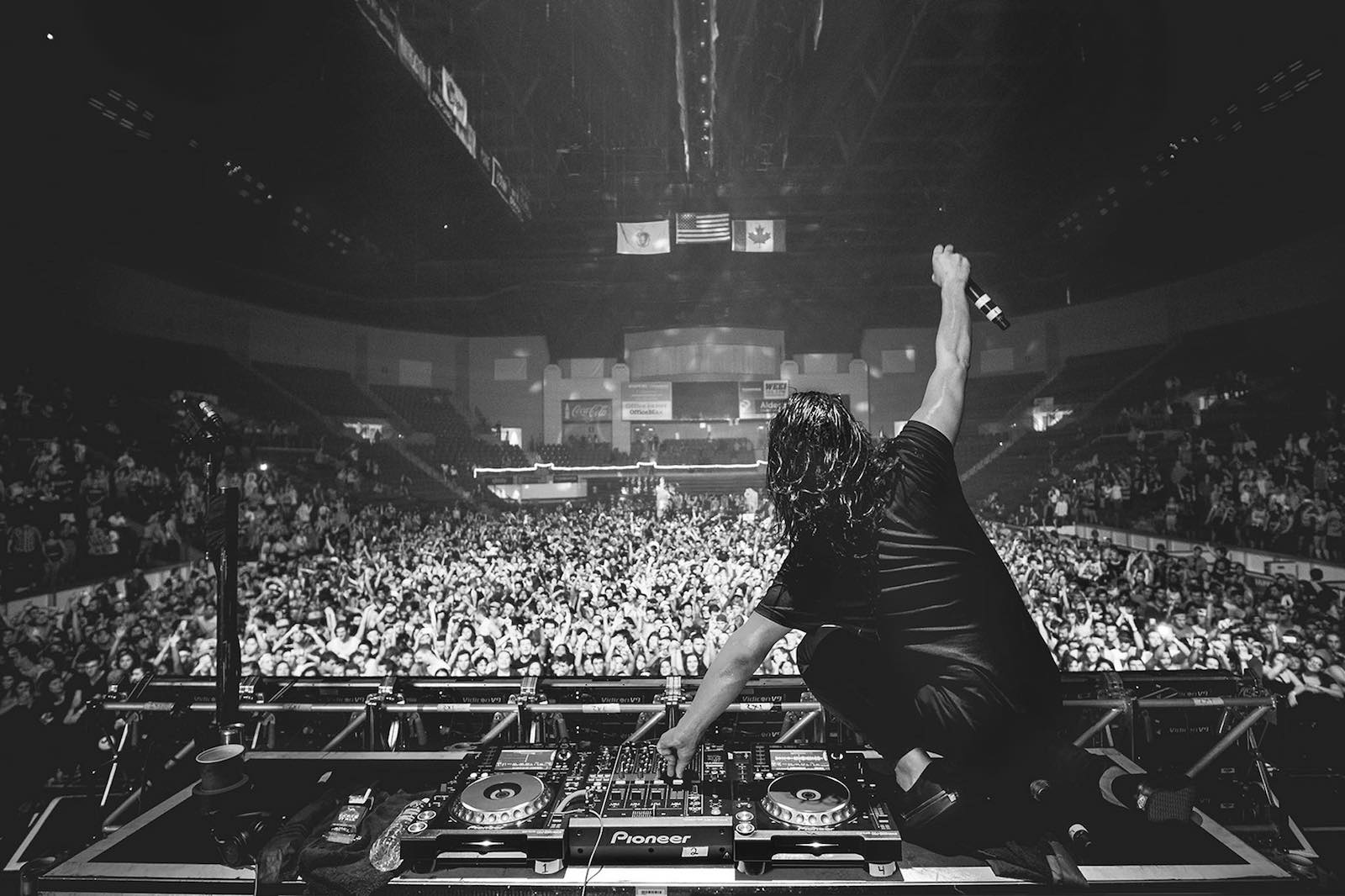 001 - DJ _ CROWD PORT - SKRILLEX copy.jpg