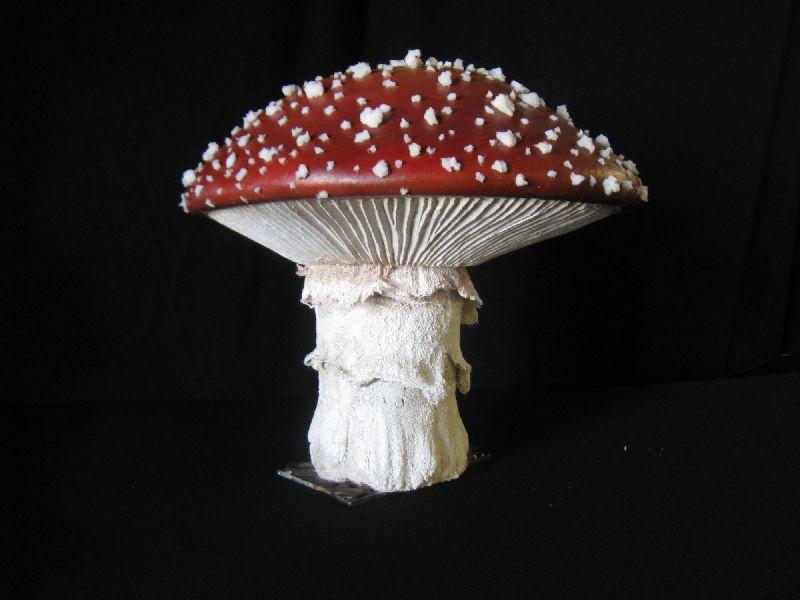 Mushroom Stools, Peter Pan Live