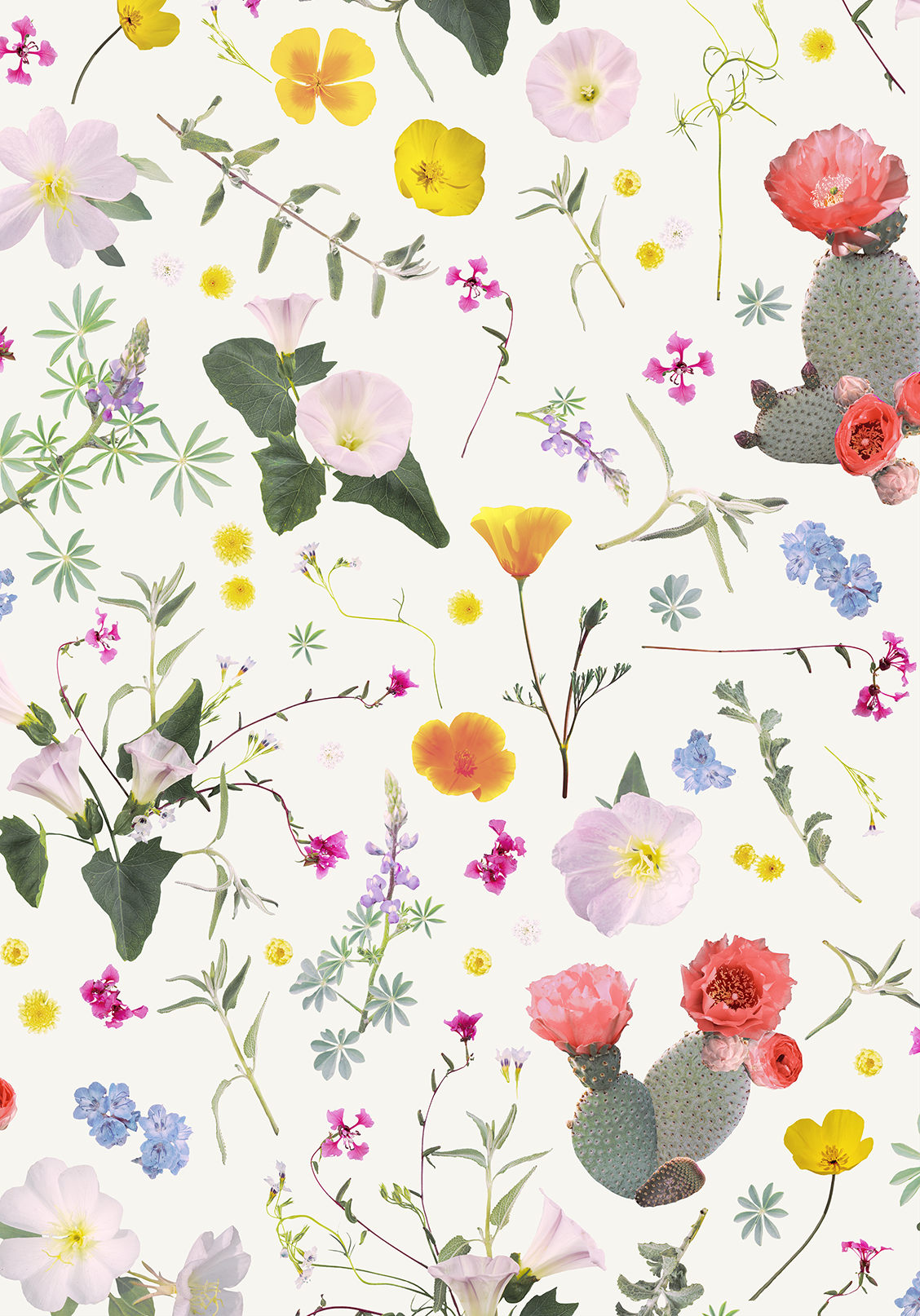 California Native Removable Fabric Wallpaper Peel And Stick