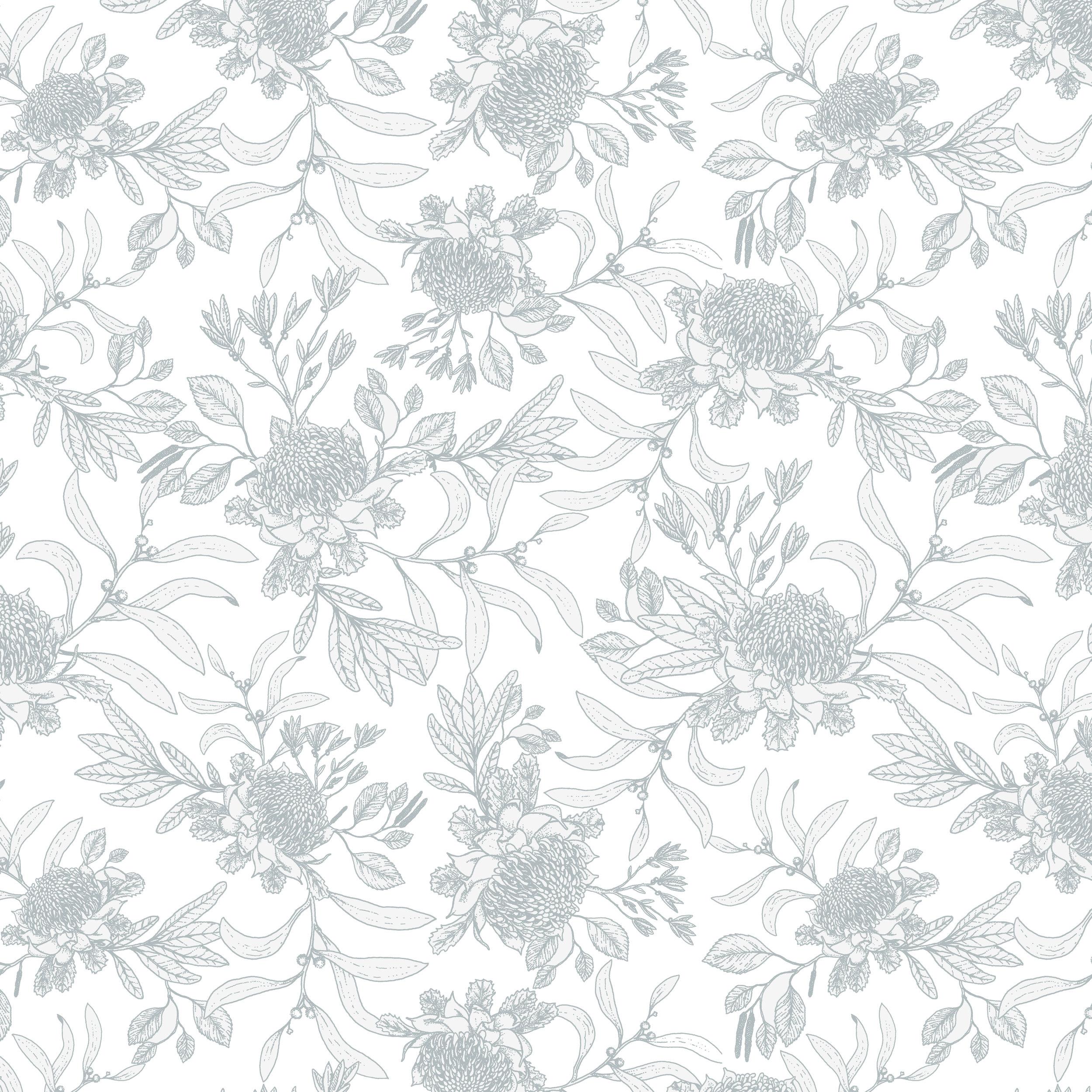 waratah outline 4.jpg