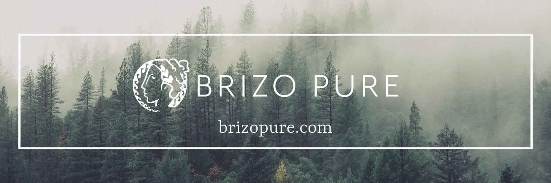 BrizoPure.jpg