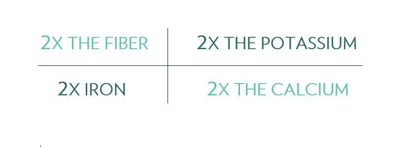 2X info.JPG