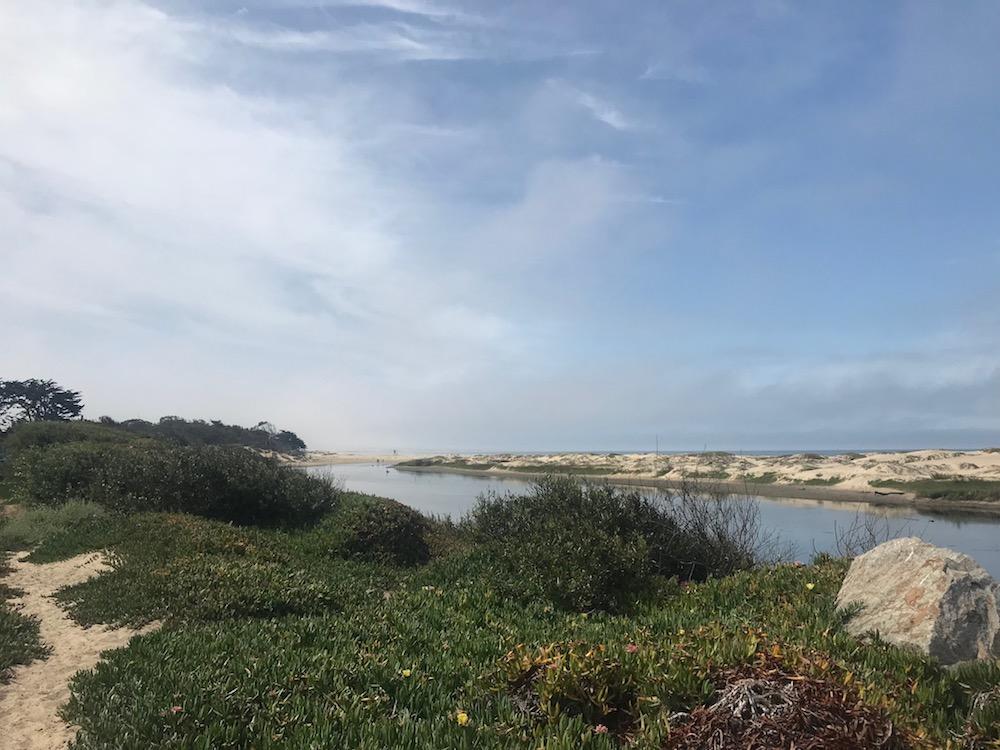 pismo beach view.JPG