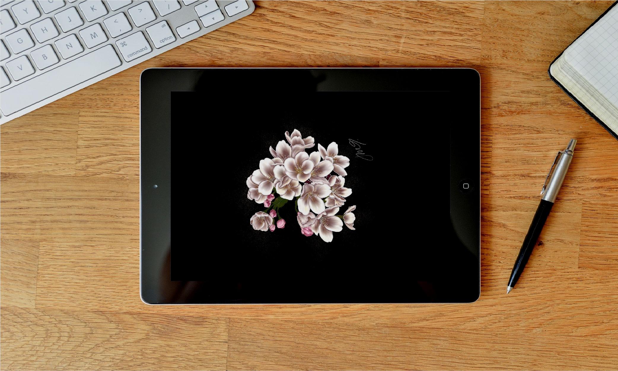 Digital Illustrations -