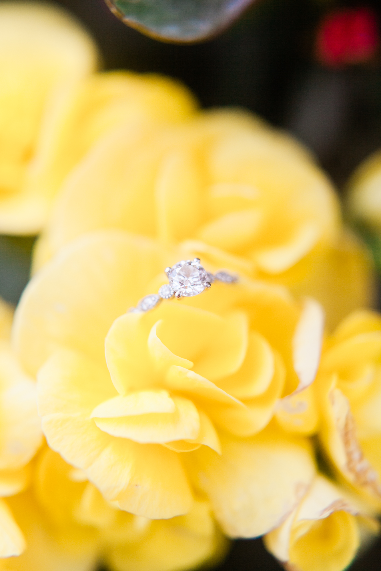 Pamper your ring too! - Get your ring cleaned so it sparkles and shines.