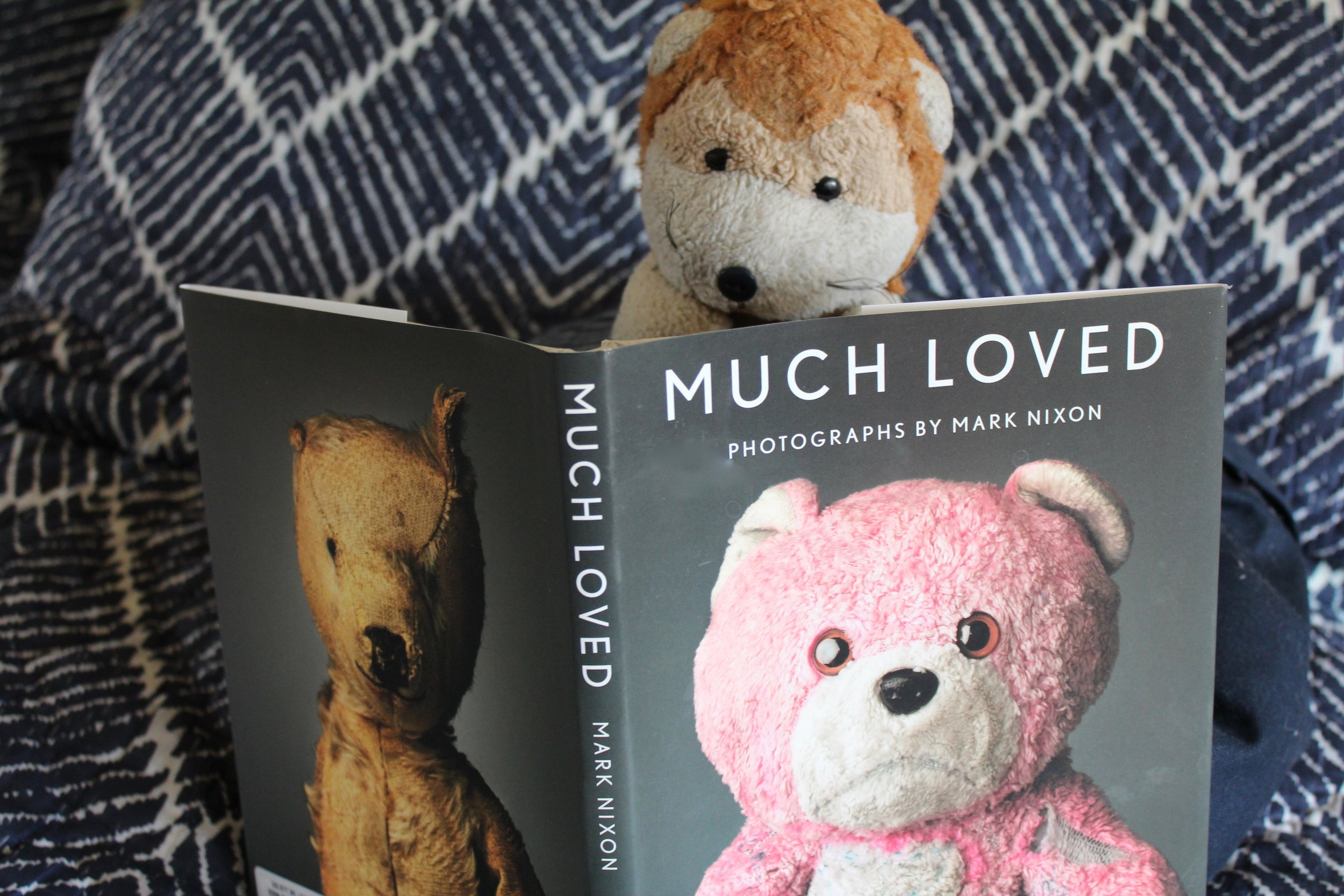 Boo Boo reads  Much Loved