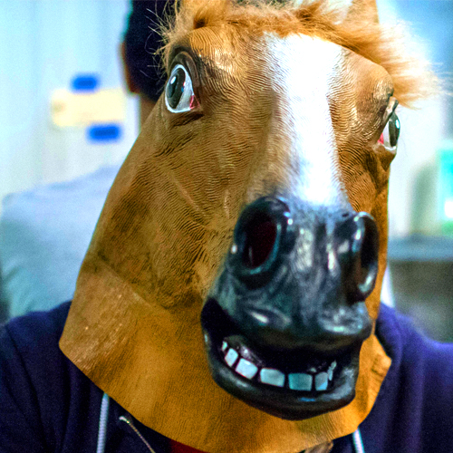 TeamPortraits_Horse.jpg