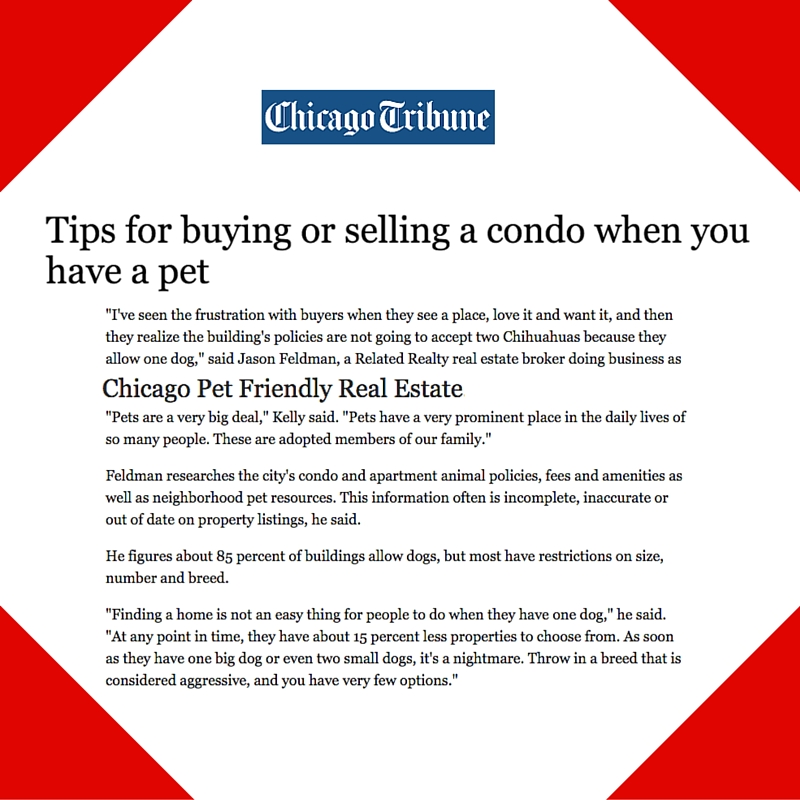 September 14, 2015 - Placement for Chicago Pet Friendly Real Estate