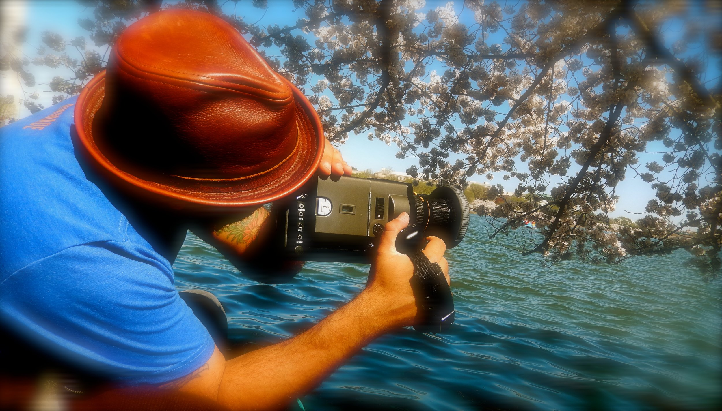 Cherry Blossoms in Super 8mm