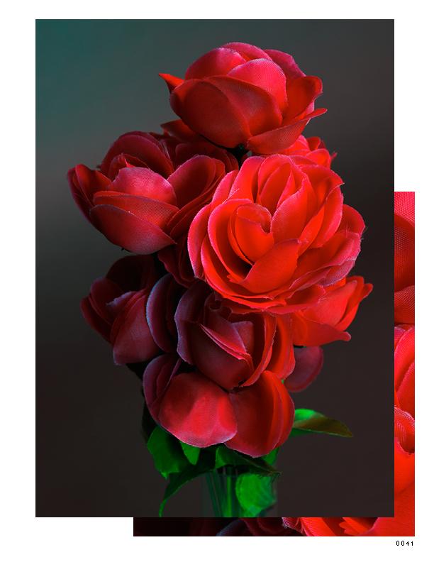 Flowers 4_1075x825_03141533.jpg