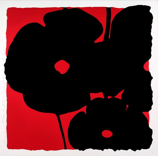 Reversal Poppies, Red and Black